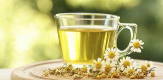 Вершки и корешки: гид по популярным травяным чаям