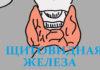 12 признаков того, что надо проверить щитовидную железу. Не игнорируй их! Скрытый враг — гипотериоз.