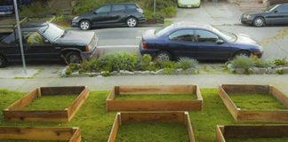 Когда соседи увидели эти деревянные сооружения, они не придали им особого значения. Вот что случилось через 60 дней!