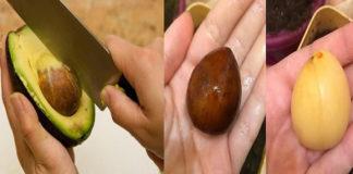 Полезные свойства косточки авокадо
