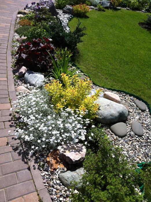 Дизайн с ивами в саду