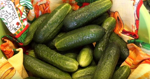 Recipes for delicious, crunchy, instant salty cucumbers.