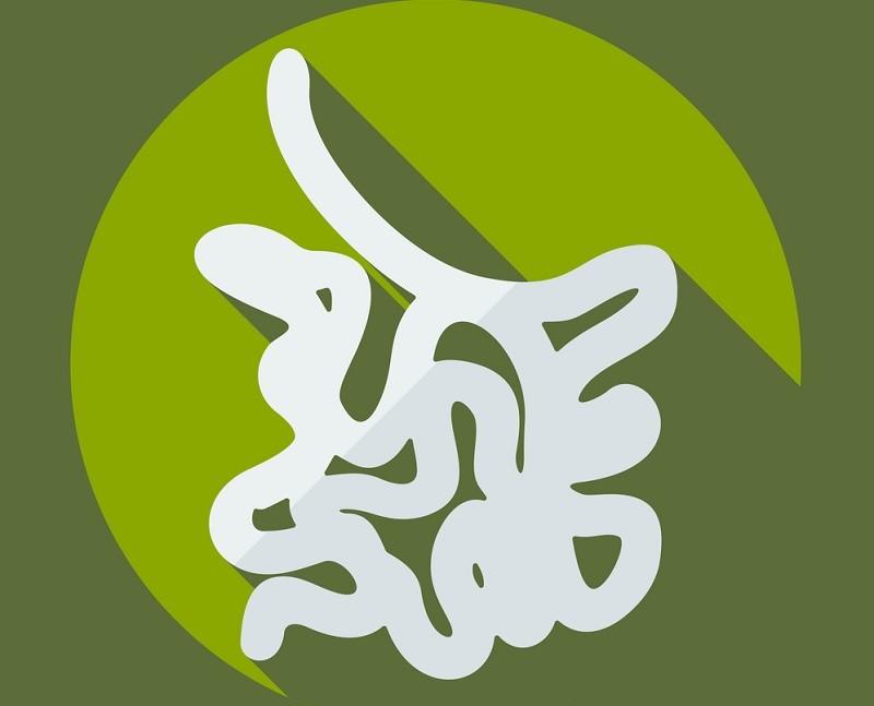 Опытный китайский врач: «Неправильно лечитесь, товарищи! Органы всегда болеют парами…»