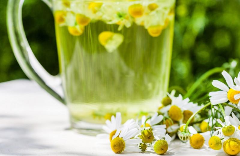 Вот почему наши бабушки обожают ромашковый чай: 15 целебных свойств