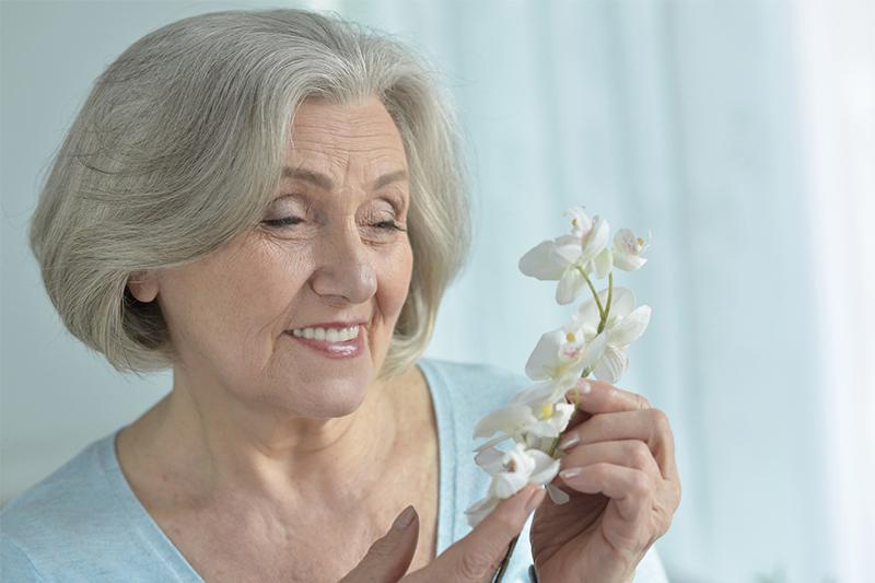 Почему не стоит держать орхидеи дома