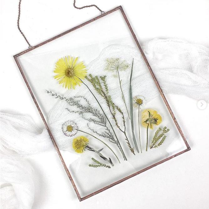 Художница вывела искусство сбора гербария на новый уровень