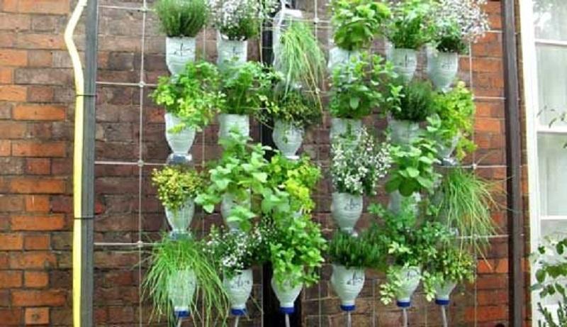 Вертикальные грядки для старательных огородников