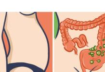 Это нельзя ни в коем случае есть женщинам после 40! Иначе проблем с лишним весом и кишечником не избежать… Основы, которые должна знать каждая!