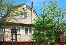 Какие деревья не нужно сажать возле дома