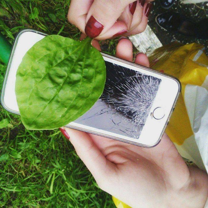разбитый айфон смешная картинка спецодежда