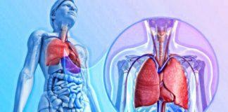 Вовремя выявить и спастись: 7 первых симптомов перехода простуды в пневмонию