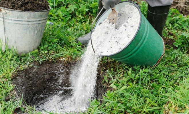 Как раскислить почву на участке – полезные советы для садоводов и огородников