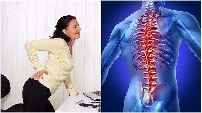Какие упражнения для растяжки спины следует выполнять чаще